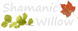 Shamanic Willow Logo